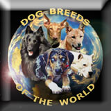 Dog breeds of the world